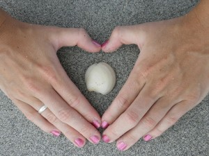 heart-395526_1280